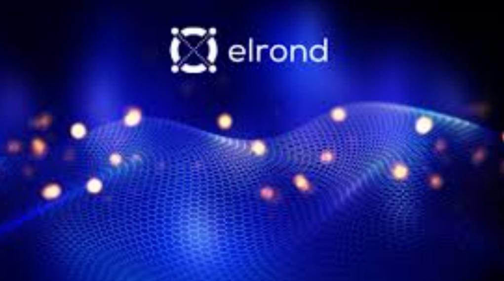 الروند(EGLD)